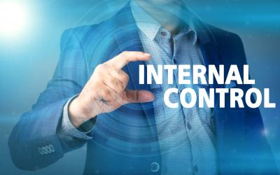 Auditees' internal control environment and governance